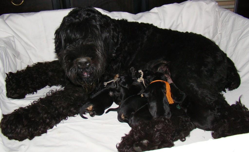 Odessa mit ihren Kindern