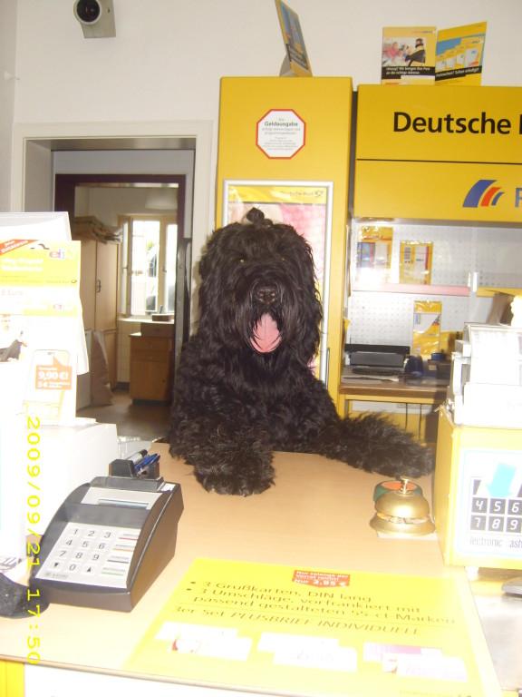 Postbeamter