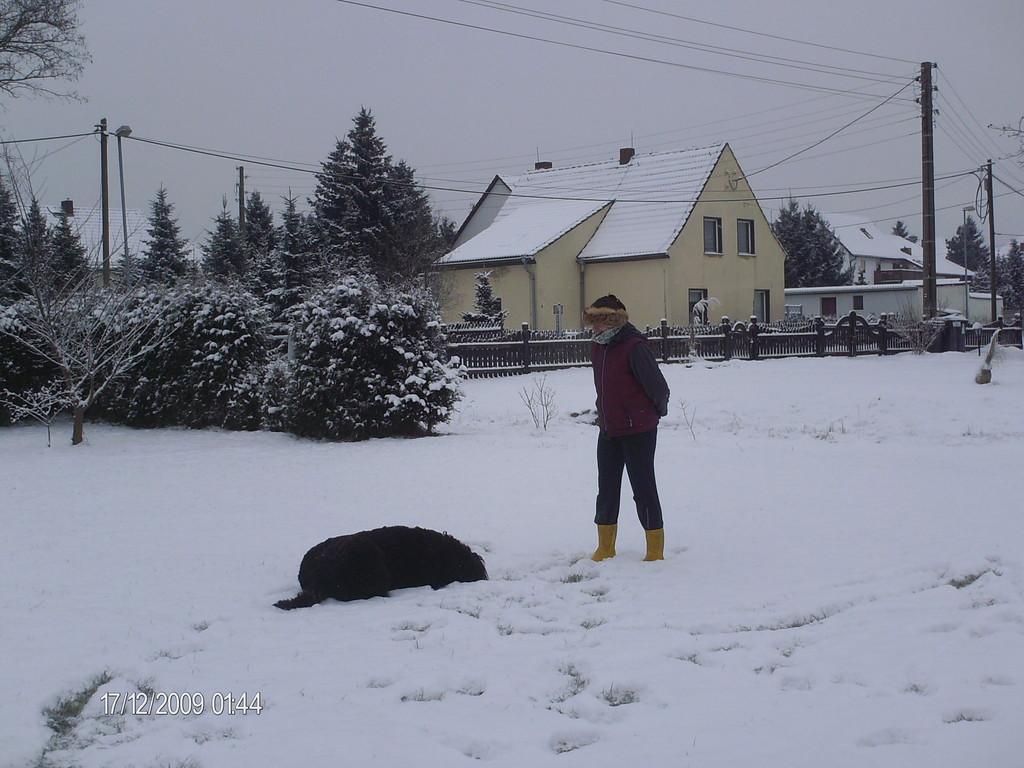 ...ablegen im Schnee und abwarten.....