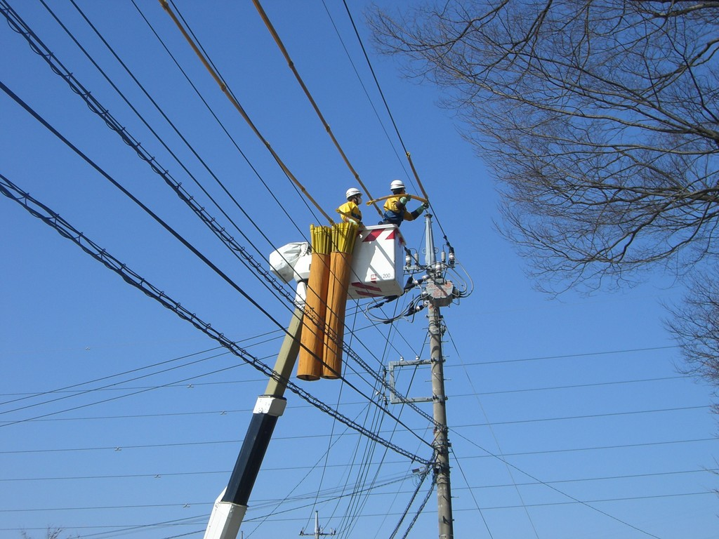 東電より電線にカバーをしていただきました