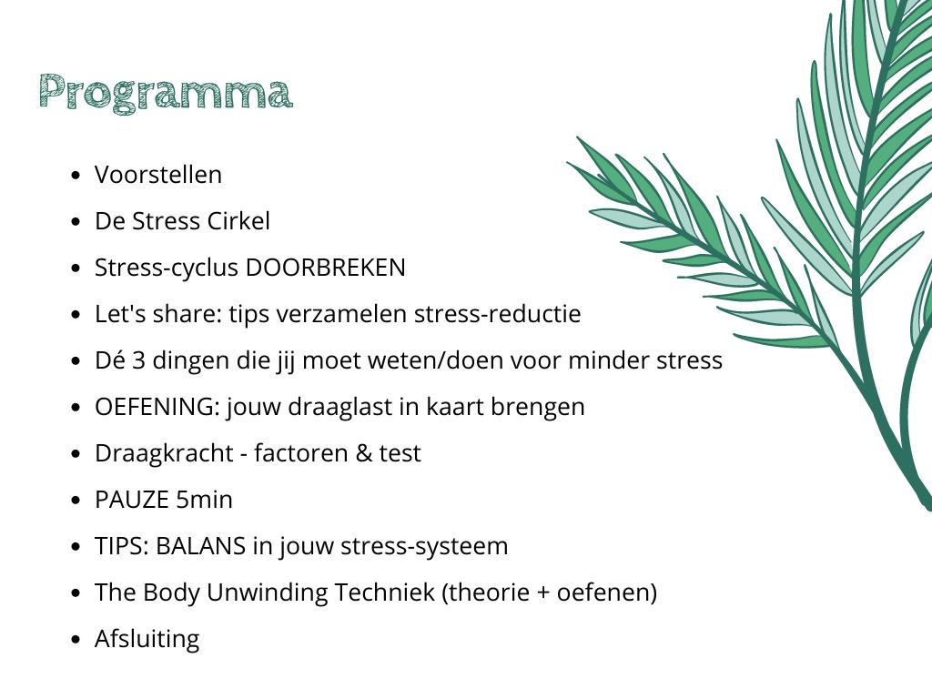 """Programma Workshop nr.1 Stress Release """"Body Unwinding"""""""