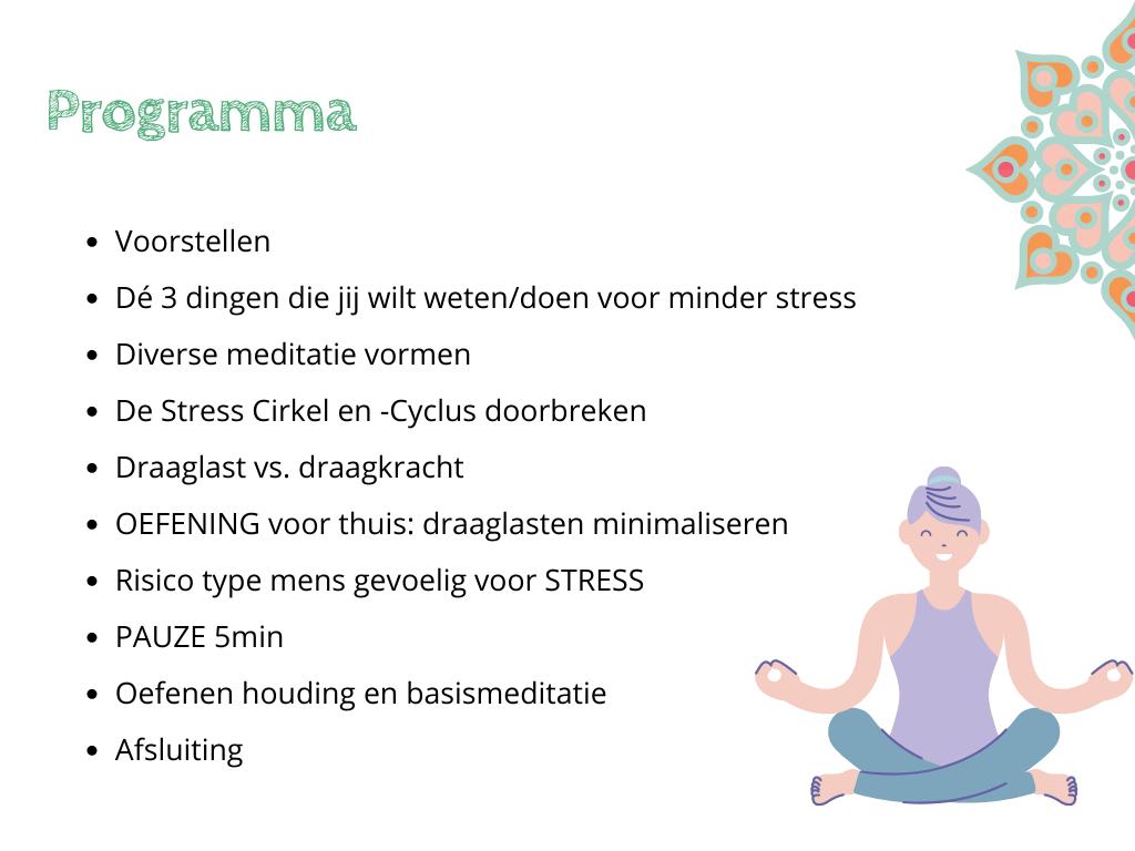 """Programma Workshop nr.2 Stress Release """"Zelfstandig Leren Mediteren"""""""
