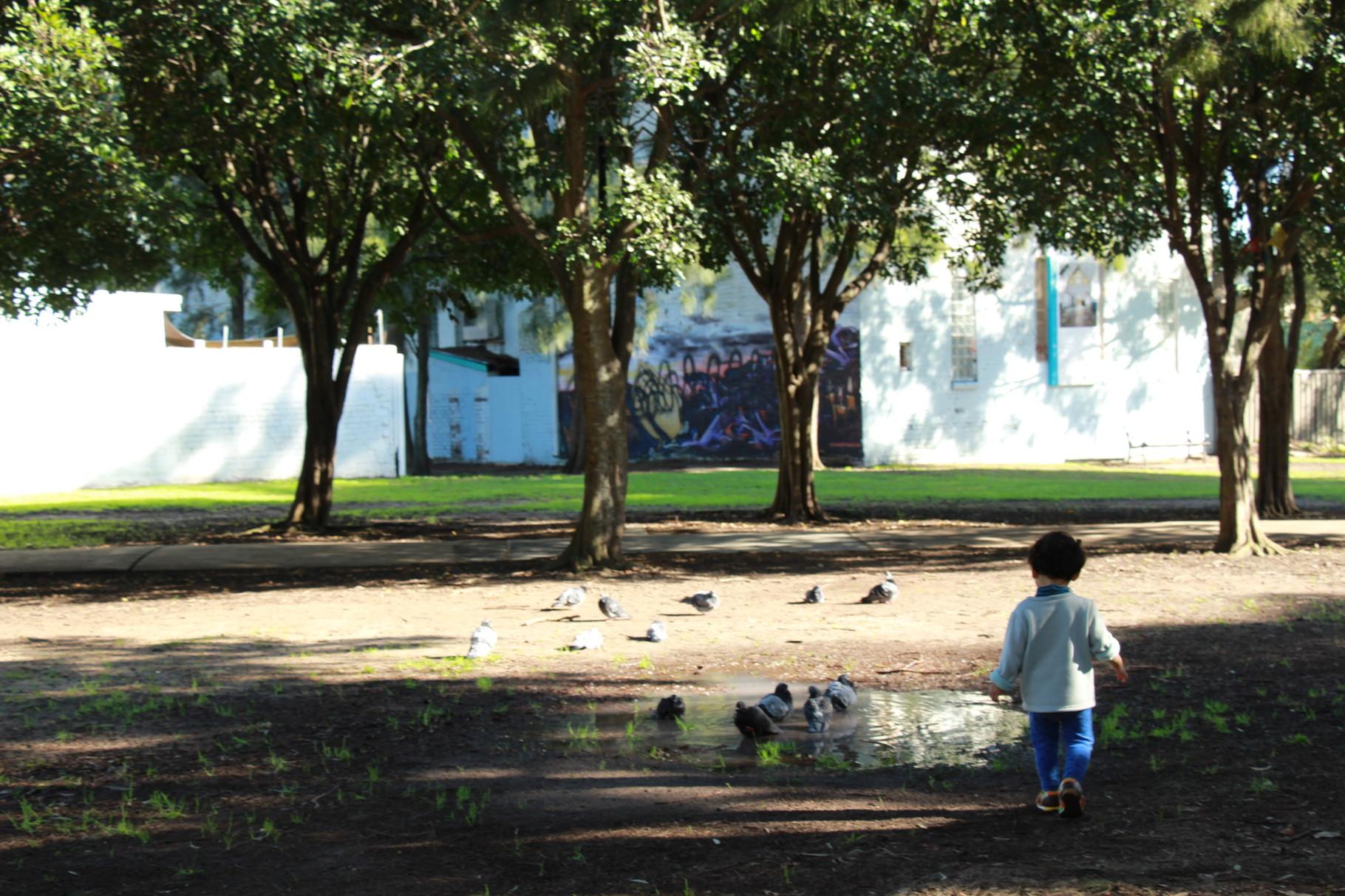シドニー 大きな公園で自然と触れ合う Coming Soon!
