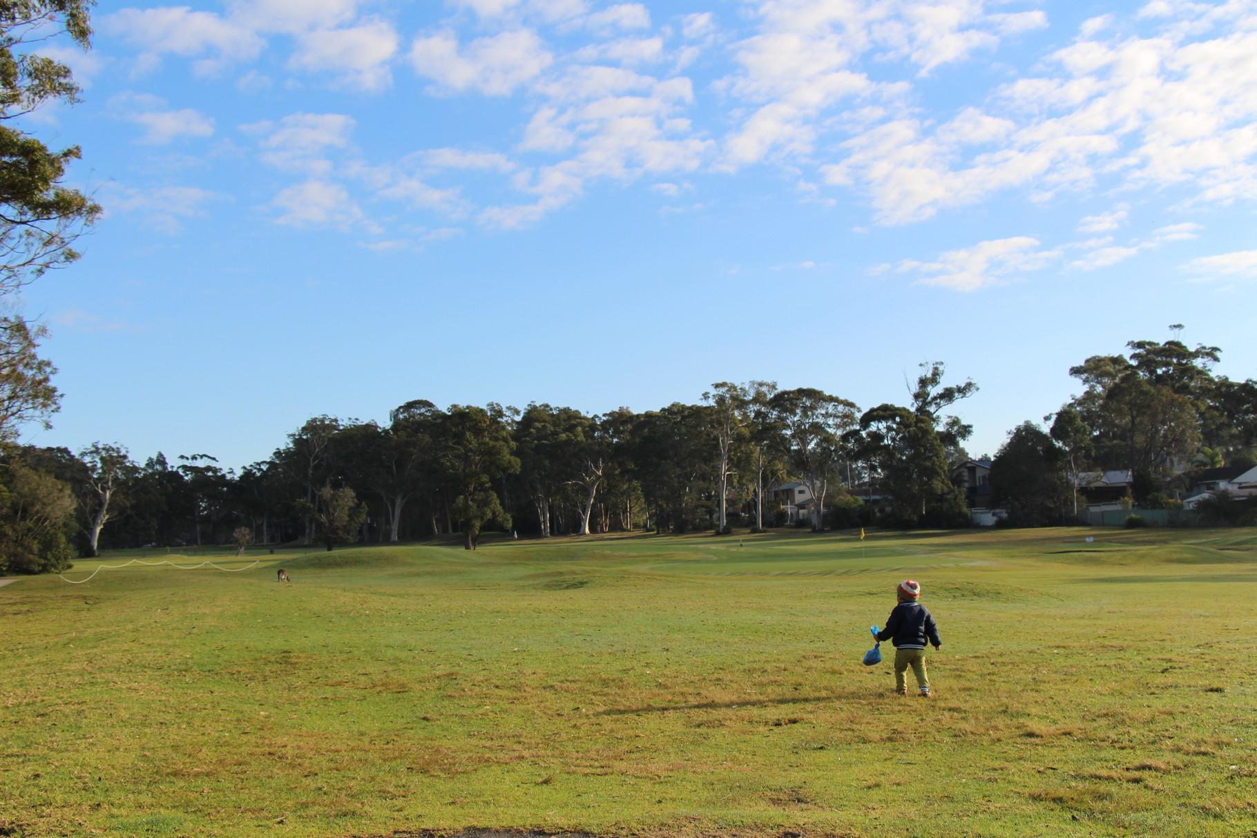 シドニー 広大な自然を満喫