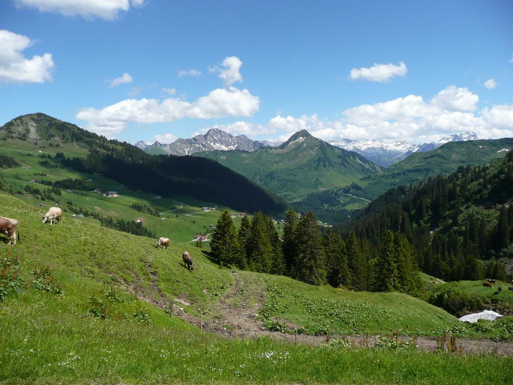Aussichtsbalkon Ragaz Alpe