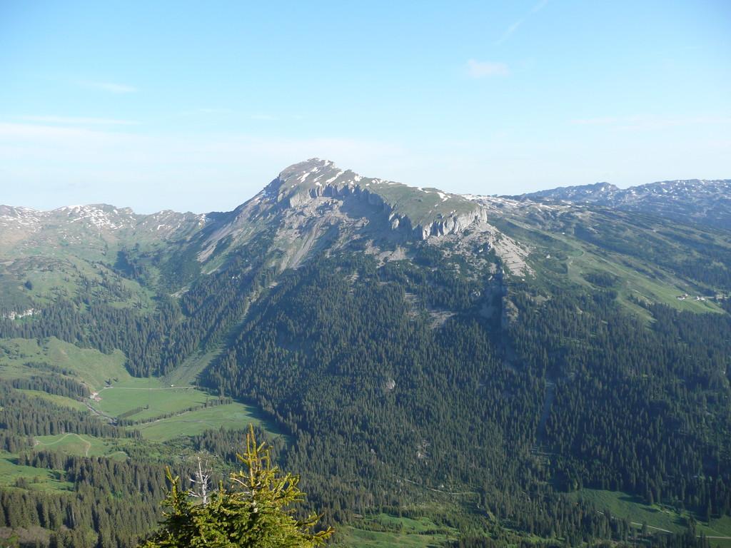 Blick vom Walmendingerhorn zum Hohen Ifen