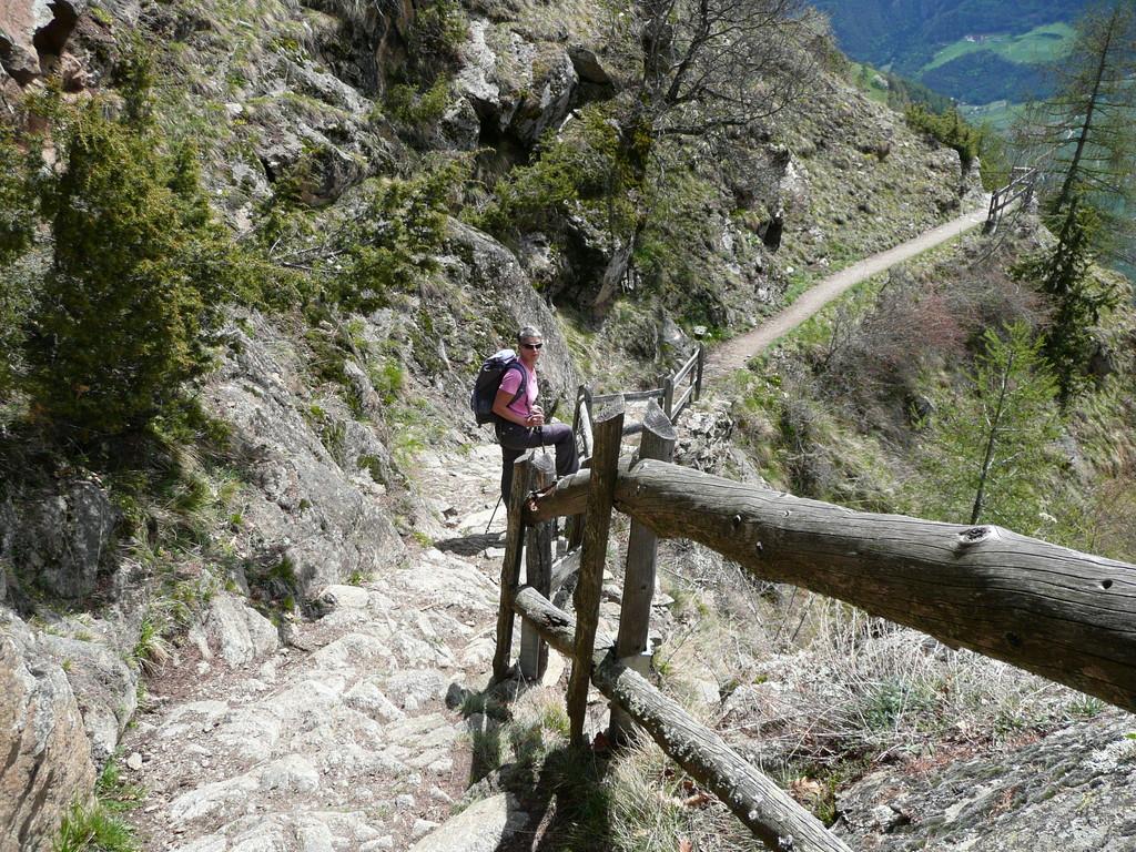 Trittstufen a la Meraner Höhenweg