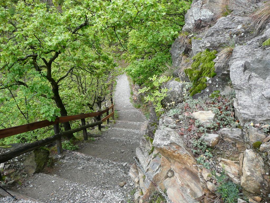Steiler Abschnitt am Sonnenberger Panoramaweg