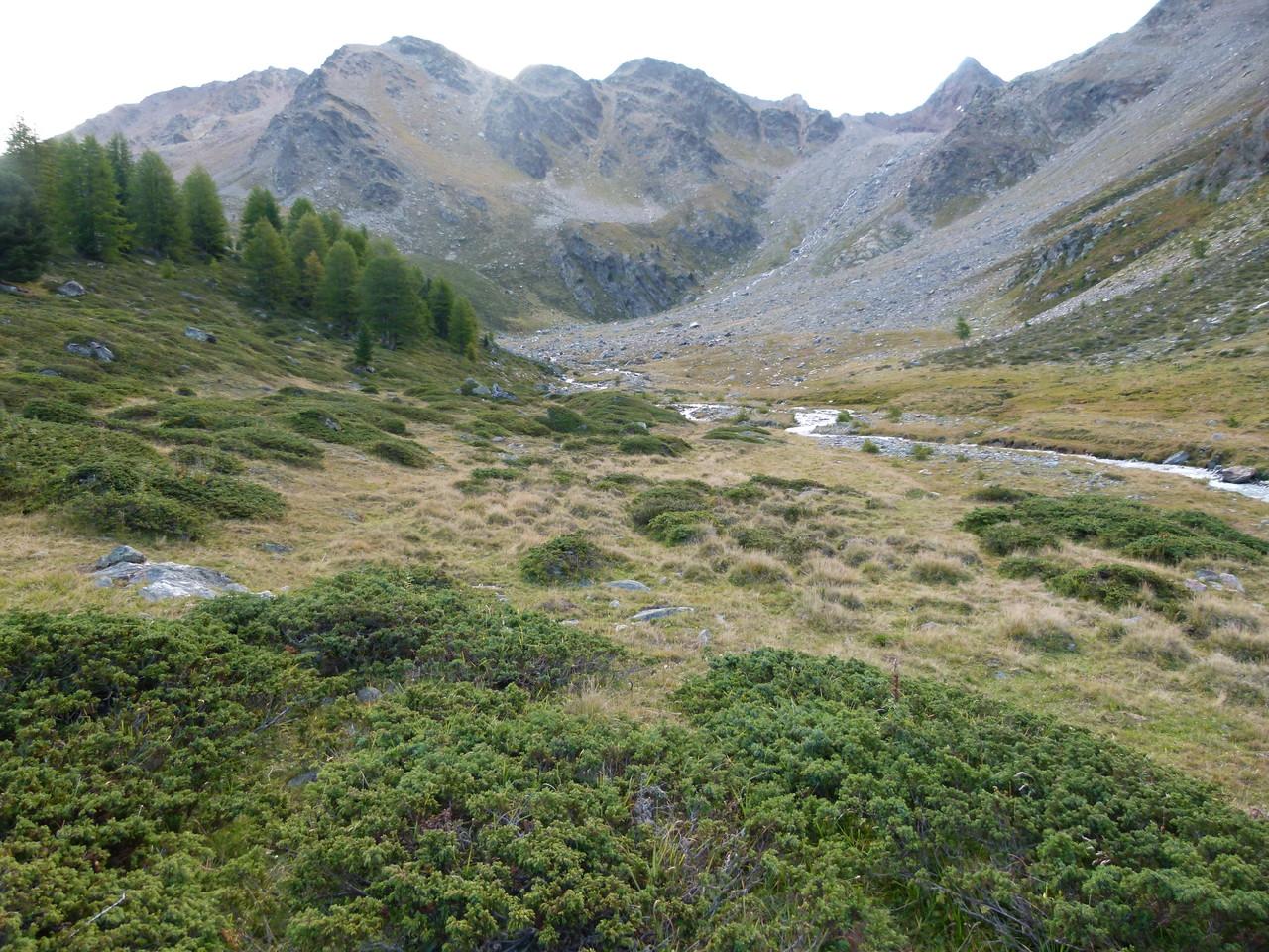 Im Zufrittal mit Blick zur Weißbrunner Spitze