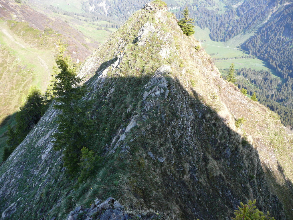 Gratweg zwischen Walmendingerhorn und Muttelbergkopf