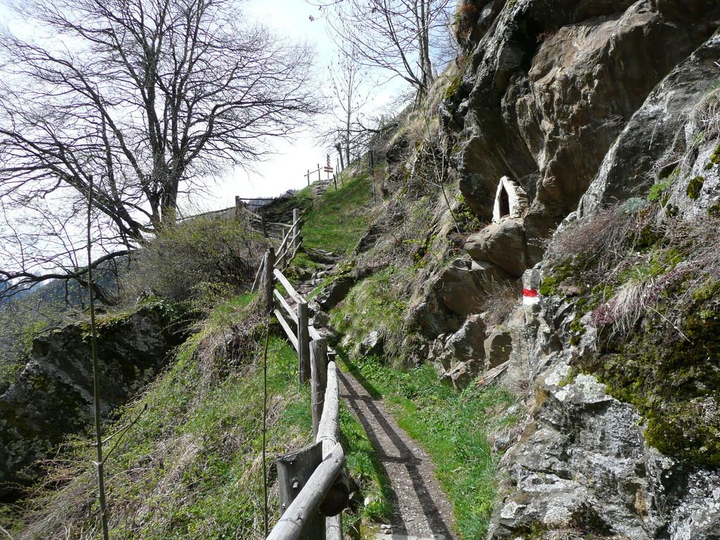 Holzzaun am Meraner Höhenweg