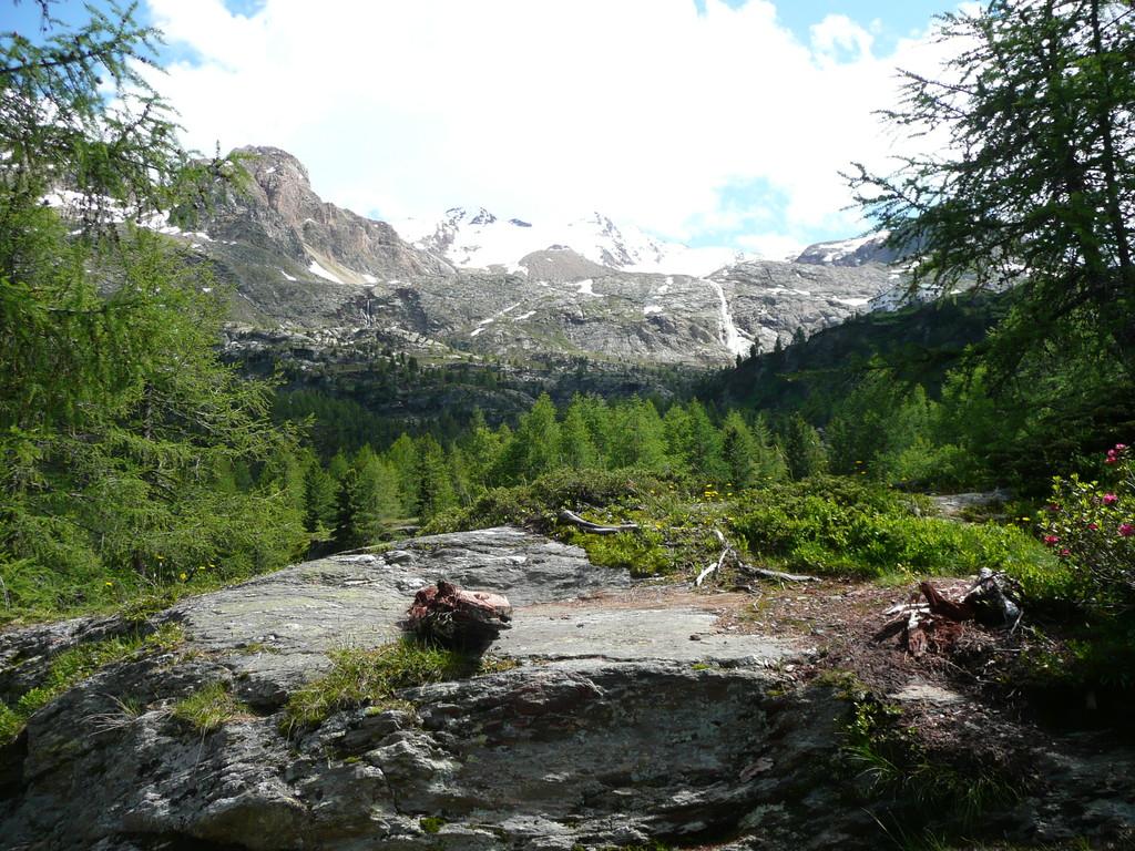 Blick beim Aufstieg zur Hütte,zur Vorderen Schranspitze und zur III. Veneziaspitze