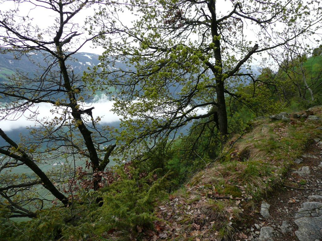 Am Sonnenberger Höhenweg