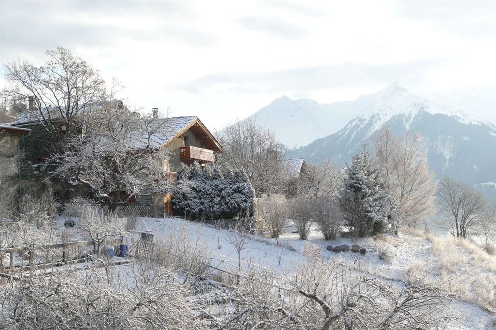 début d'hiver / beginning of winter