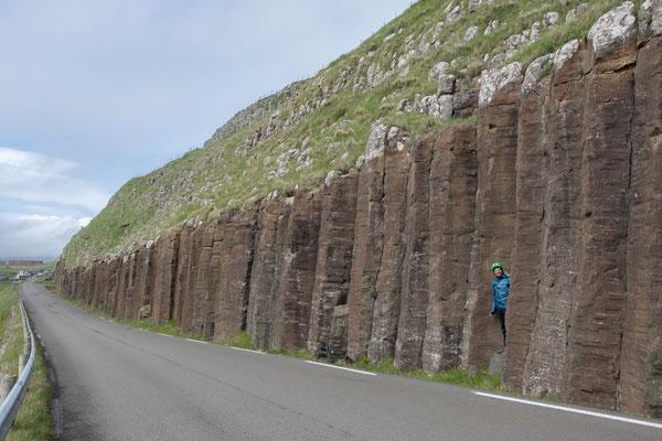 Basaltsäulen II.