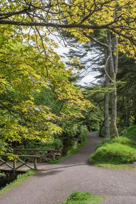 Weil es so schön grün und gross ist gleich nochmals: der Park!
