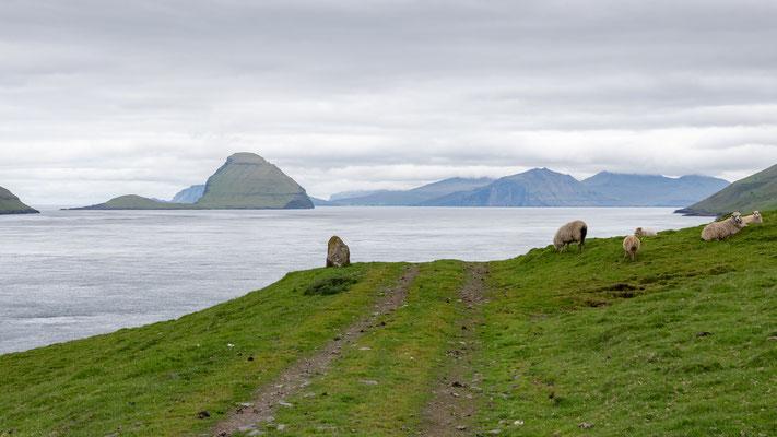 Blick auf die Inseln Koltur und Vágar.