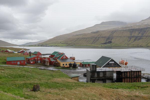 Ehemalige Walfangstation.