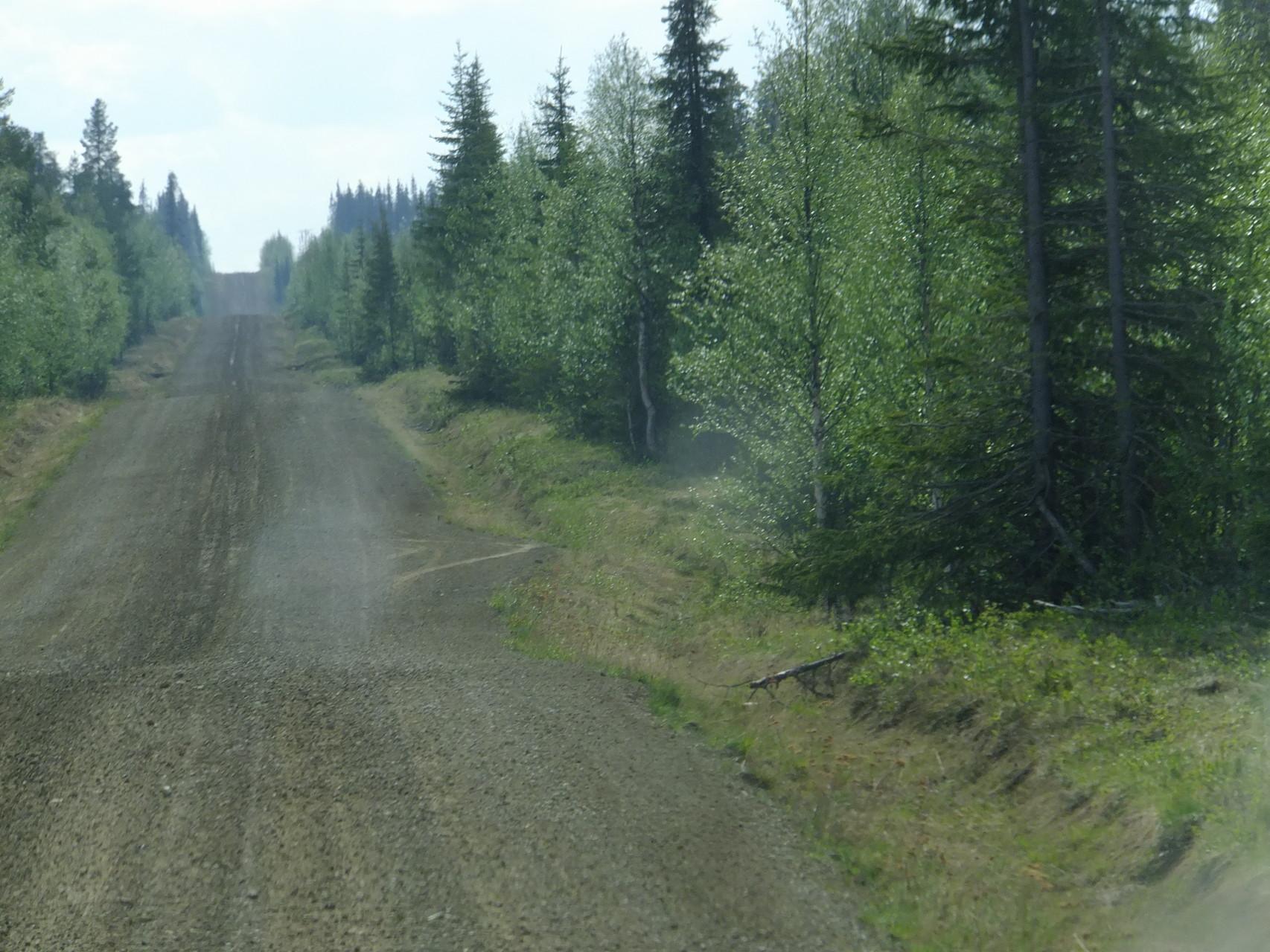 Naturstraßen durch den Wald