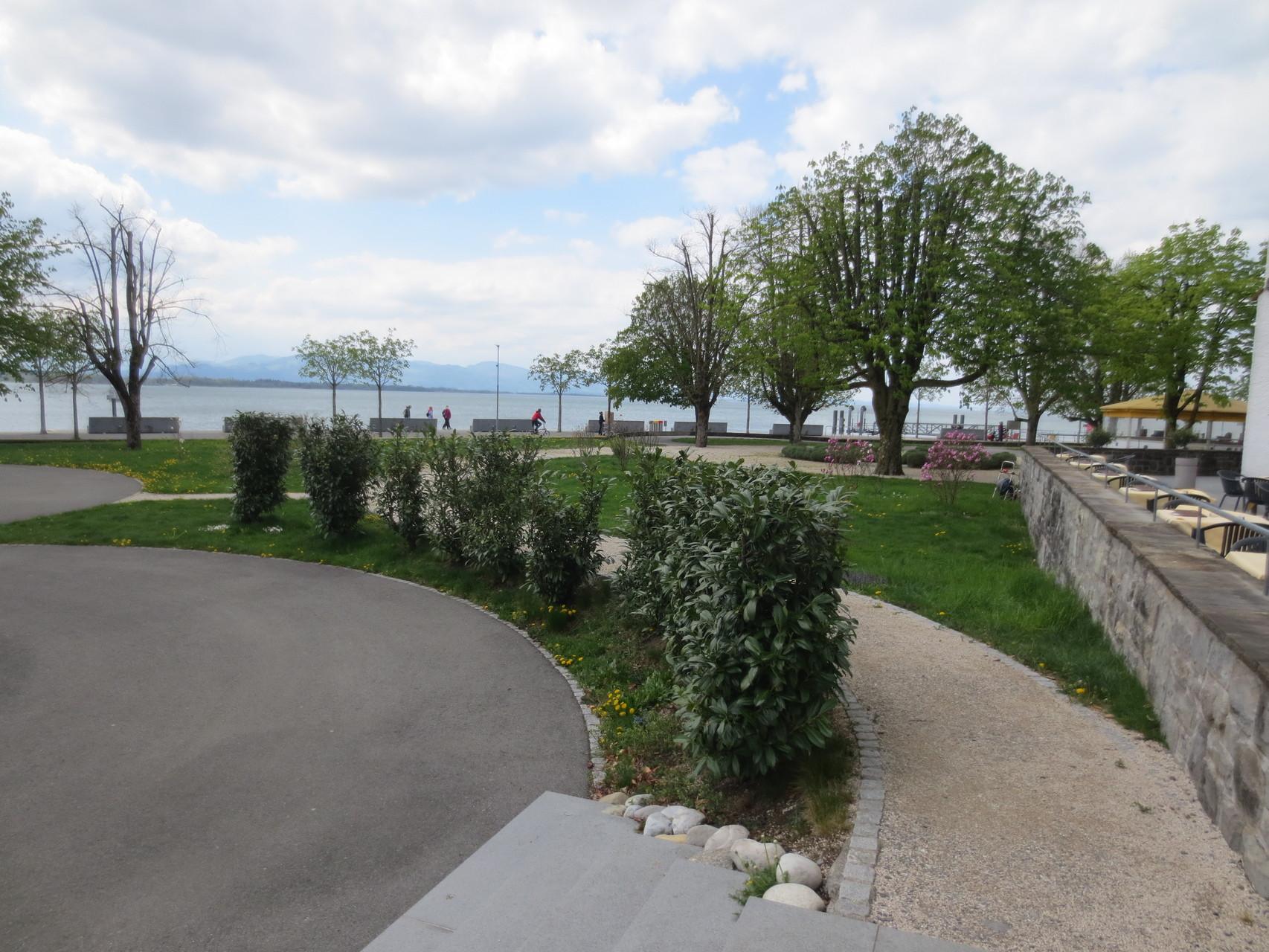 Idylle am See - unmittelbare Umgebung - Sentido Seehotel am Kaiserstrand im österreichischen Lochau