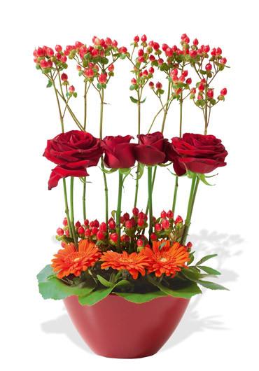 Folie des fleurs des fleurs etc francheville vente for Vente de fleurs en ligne