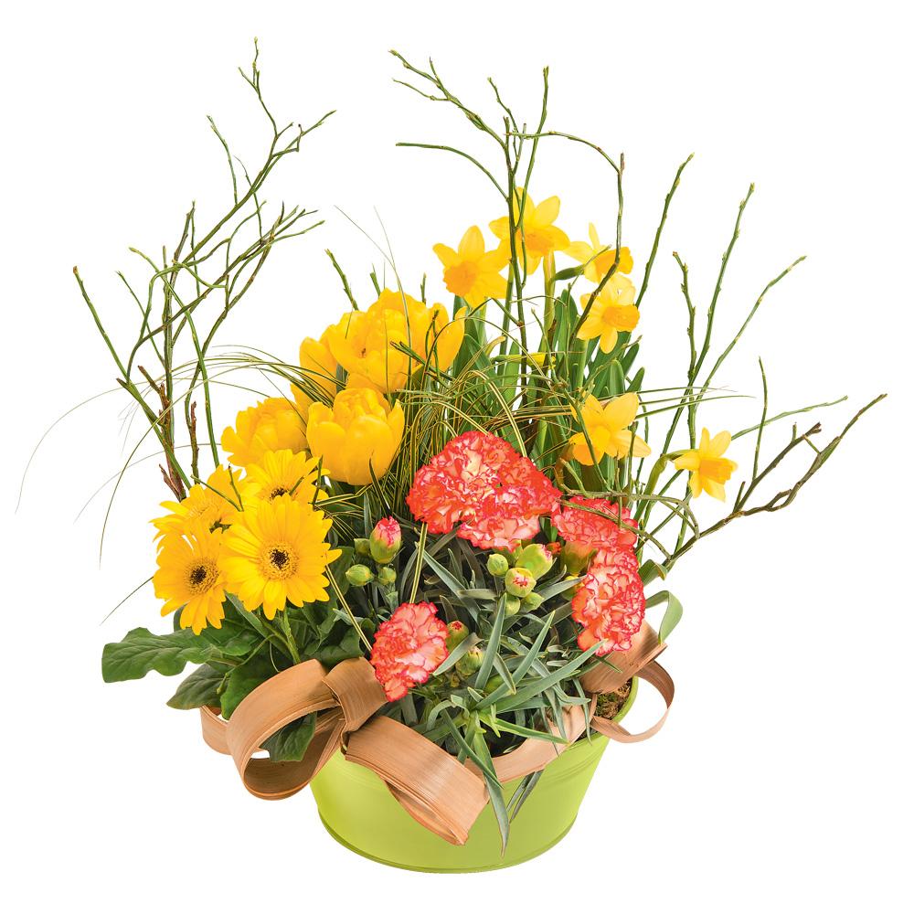 Jazzy des fleurs des fleurs etc francheville vente for Vente de fleurs en ligne