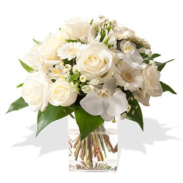 Adonis des fleurs des fleurs etc francheville for Vente de fleurs en ligne