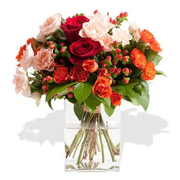 D dicace des fleurs des fleurs etc francheville for Vente de fleurs en ligne