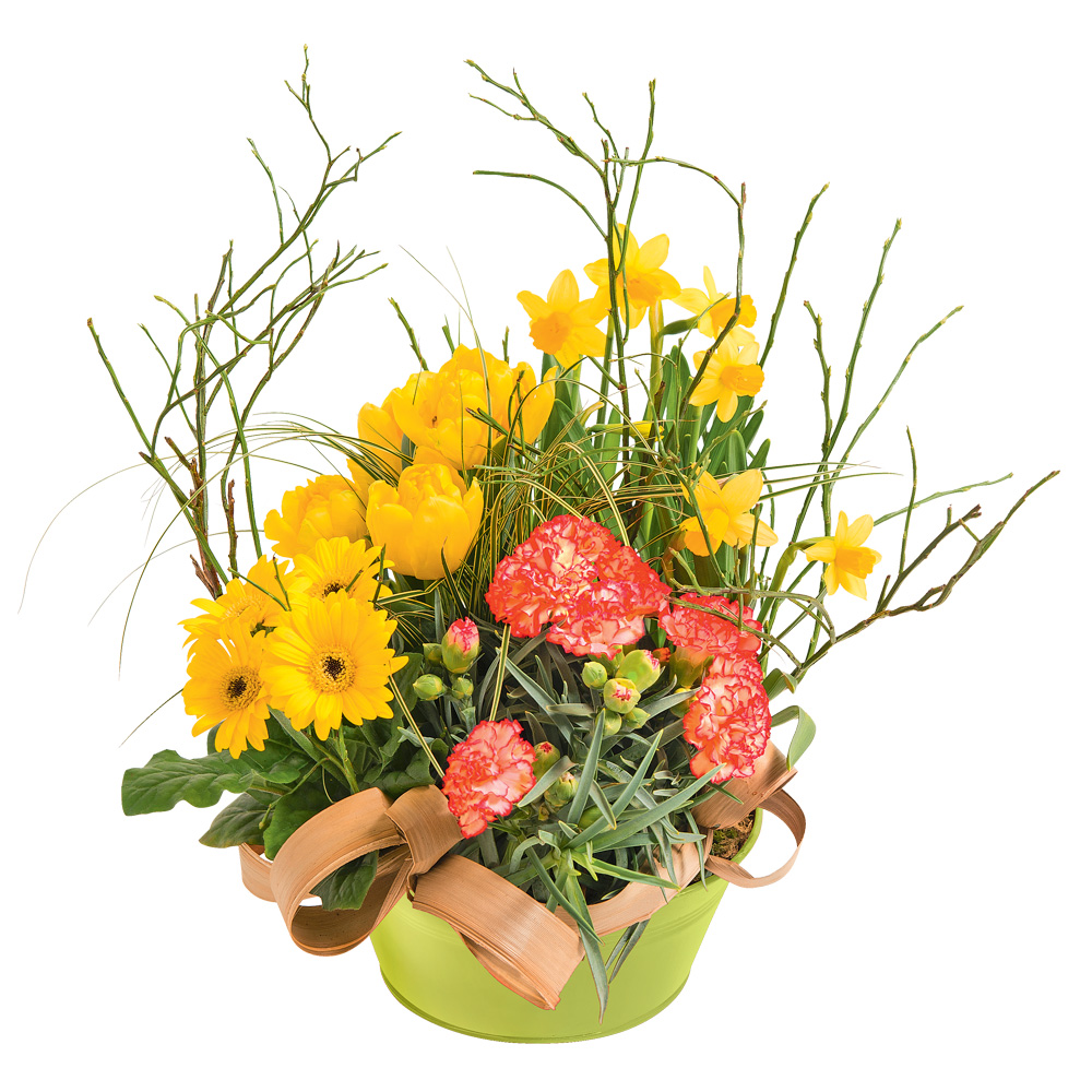 Jazzy francheville des fleurs des fleurs etc for Vente de fleurs en ligne