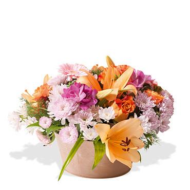 Complicit des fleurs des fleurs etc francheville for Vente de fleurs en ligne