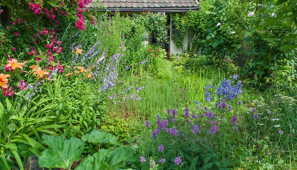 Weg zum Kunstraum K634 durch den Garten, Koeln