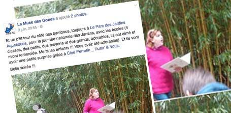 Christine de l'Association la Muse des Gones post sur Facebook ses remerciements pour le travail de la graphiste Cloé Perrotin en 2016