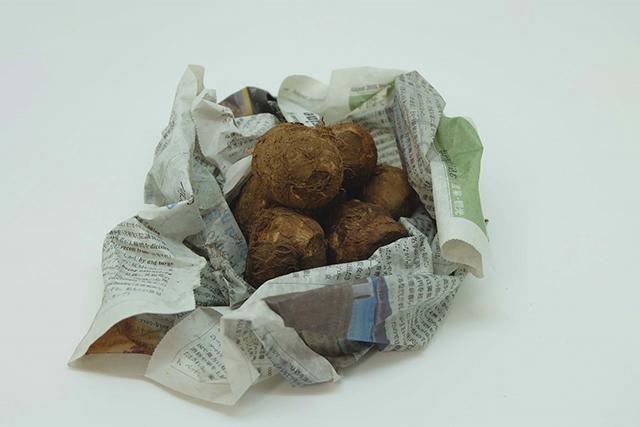 新聞紙にくるまれた里芋