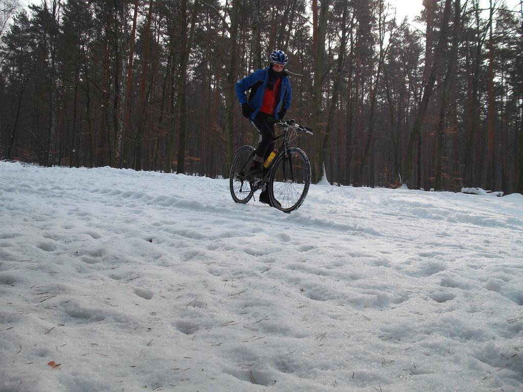 Wintertraining im Wald
