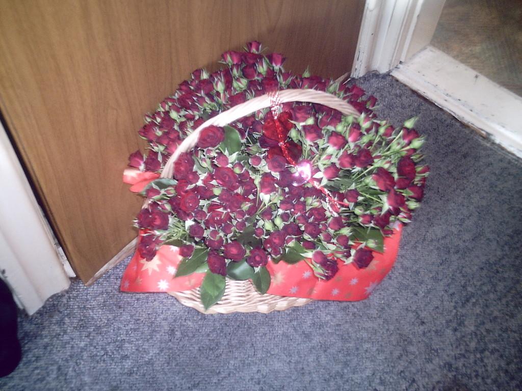 Für Fynn solls rote Rosen regnen!