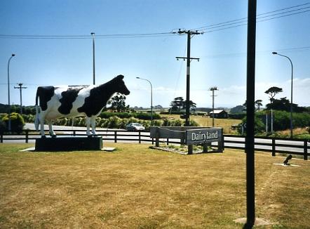 Dairy Land, Hawera, Neuseeland, für Frankfurter Rundschau