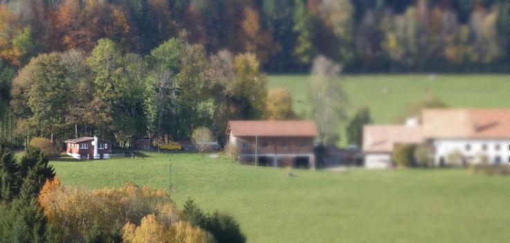 Ferienhaus, Chalet, mit Garten Naturgebiet