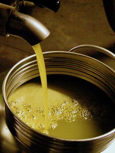 Casafredda extra virgin olive oil