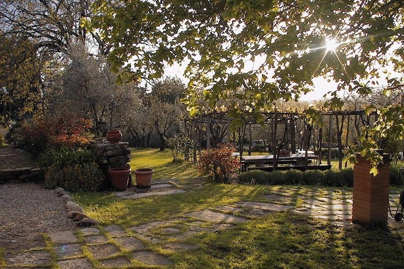 Casafredda pergola, Arezzo, Tuscany