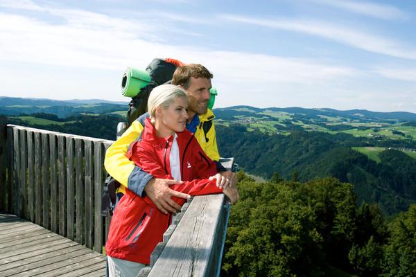 Wandern am Donausteig - Aussichtsplattform
