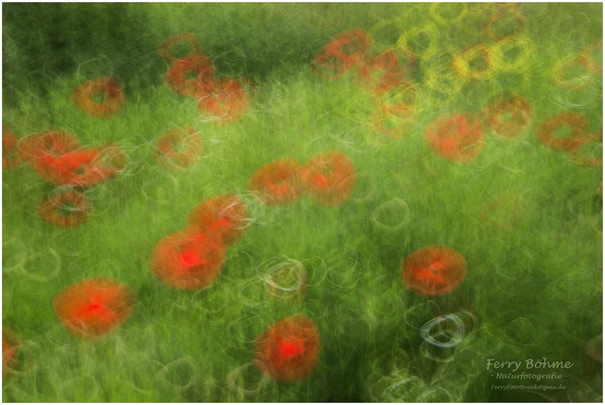 Hommage an Claude Monet