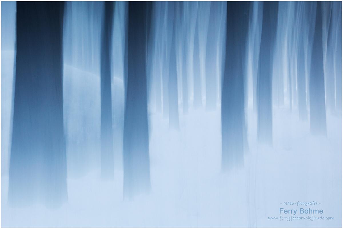 Geisterwald - Winter im Fichtelgebirge