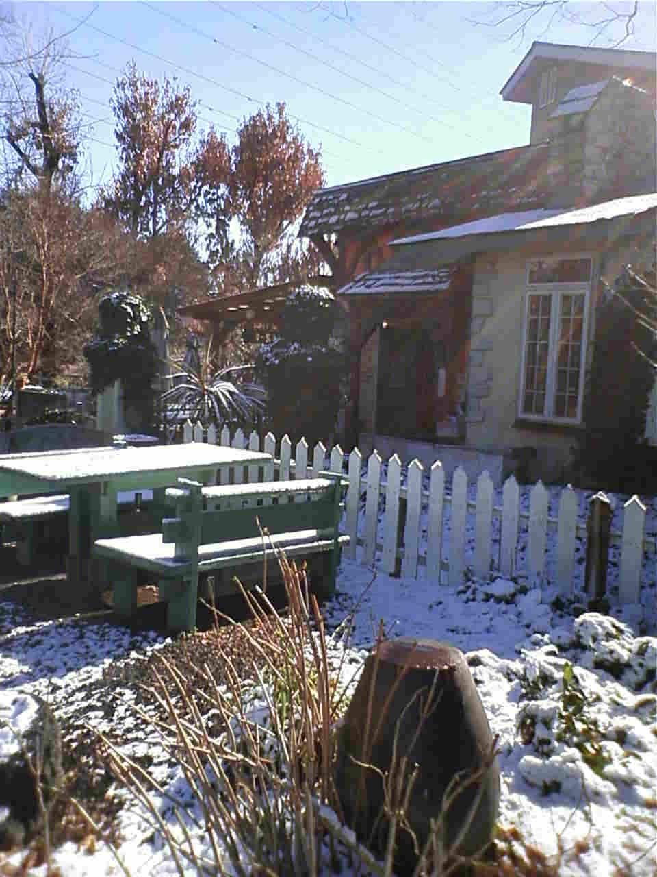 冬の雪景色はワンちゃんも喜びます