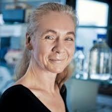 Prof. Ulrike Blaumeiser, Amsterdam