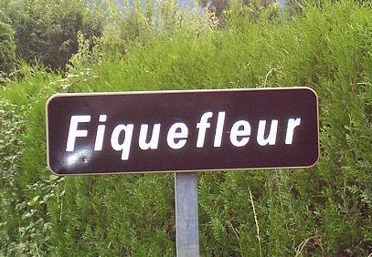 frankreich: sag es wenigstens durch die blume