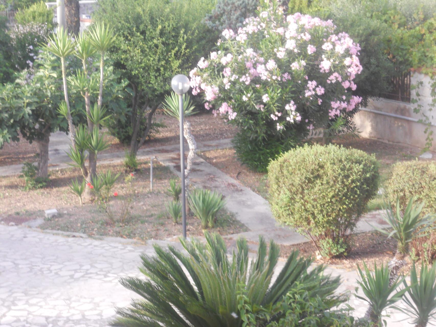 Vista dall'alto del giardino a destra