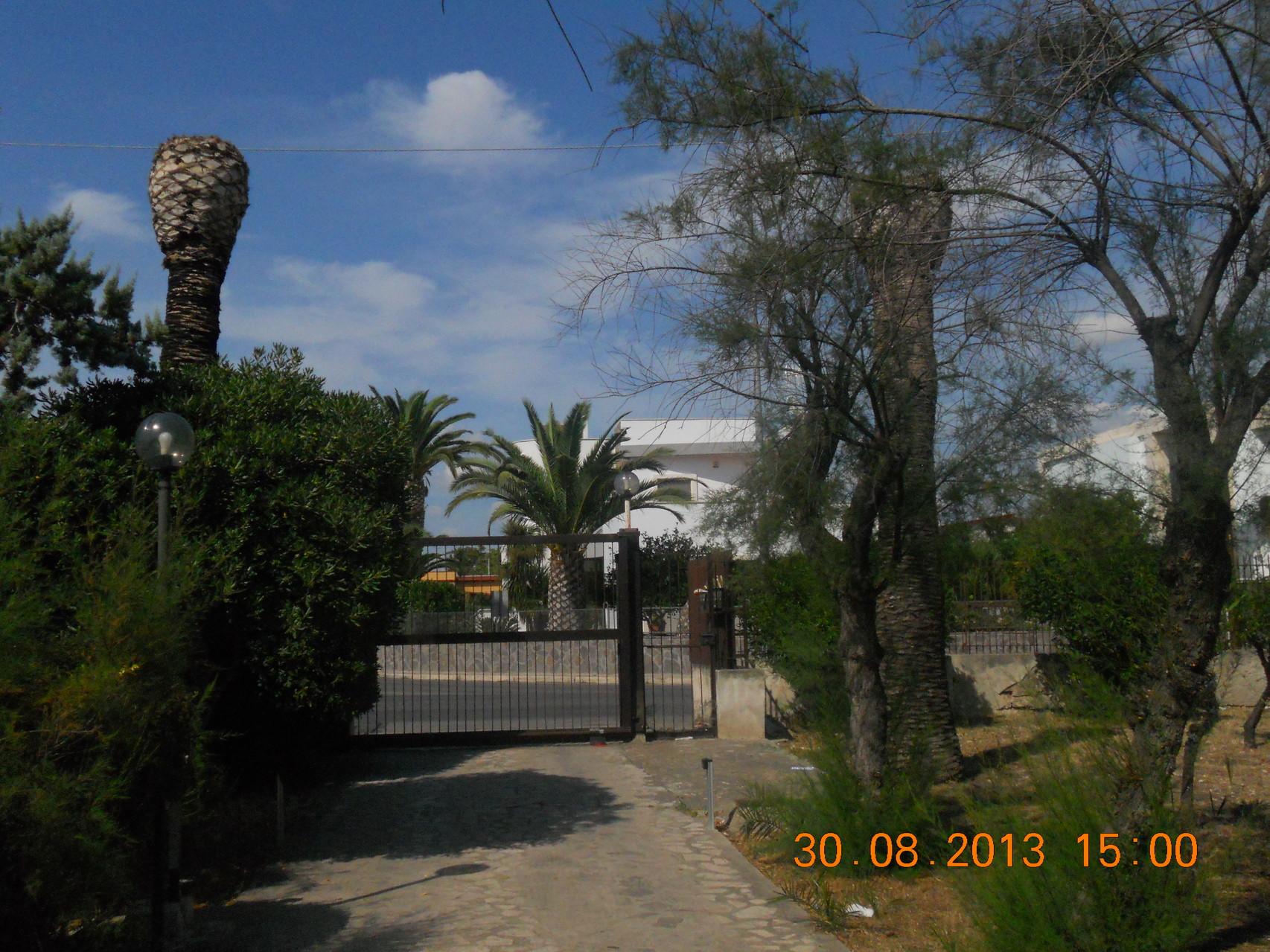 Viale d'entrata della villa