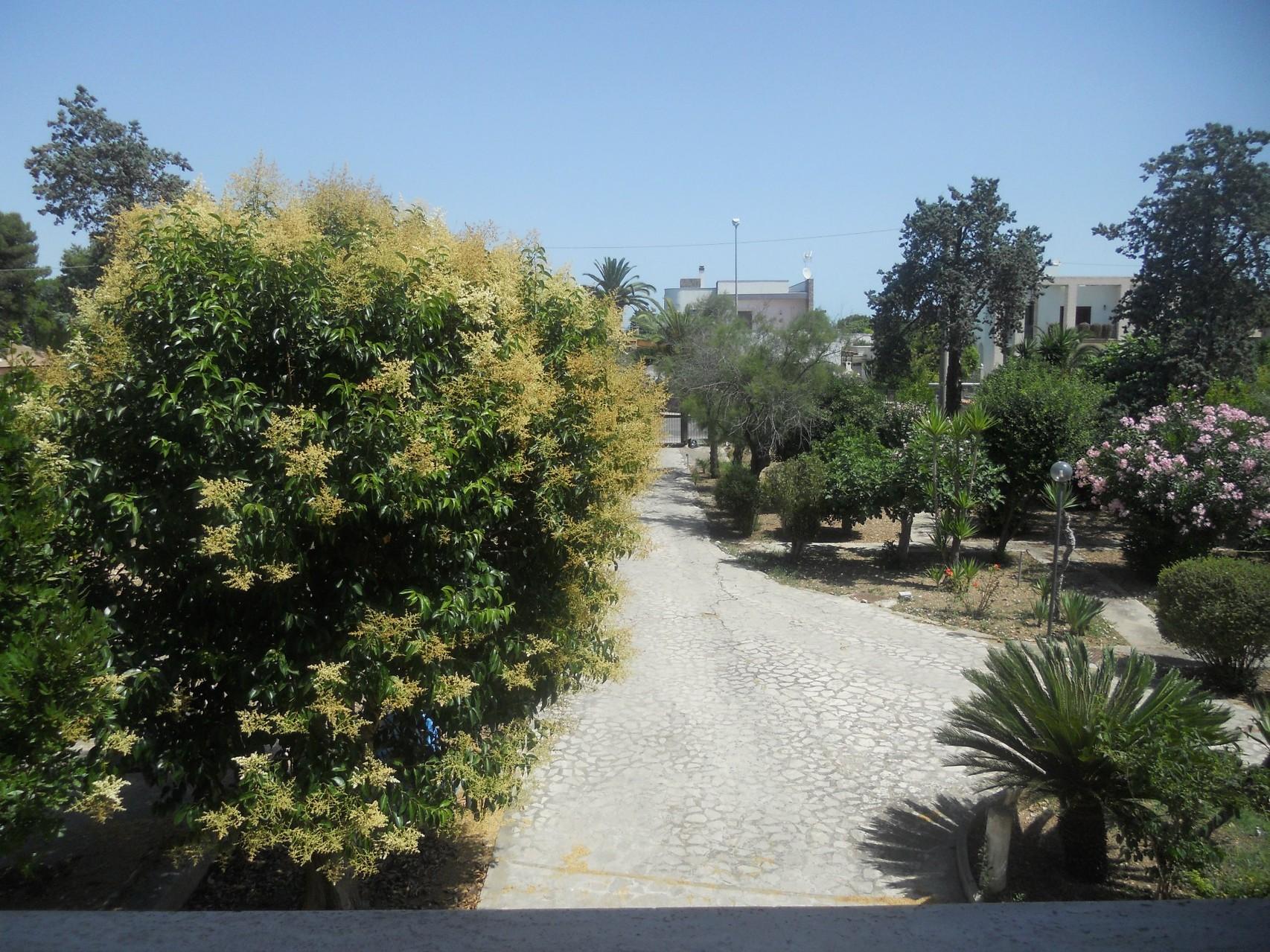 Vista dall'alto dell'entrata alla villa.