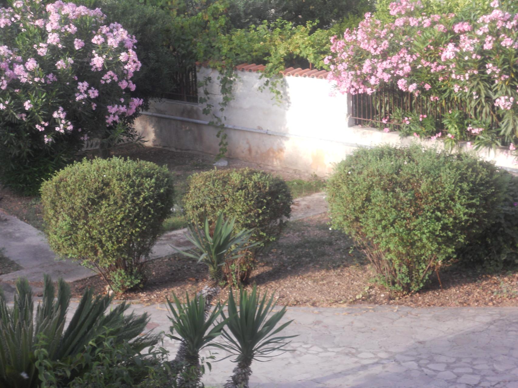 Rechtse deel van de tuin van bovenaf gezien.