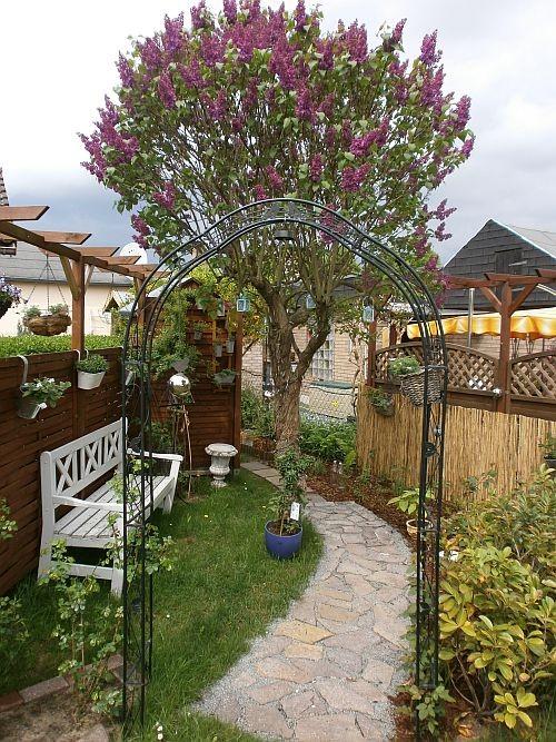 Der fertige neue Rosengarten im Mai 2013